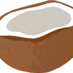 coconut-303358__180
